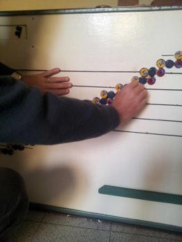 Strumento musicale didattico, ideato e brevettato dal Prof. G. Pregnolato