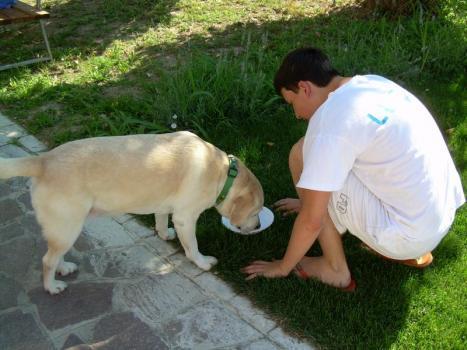 un ragazzo con un cane guida