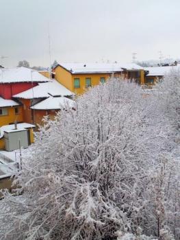 tetti imbiancati dalla neve